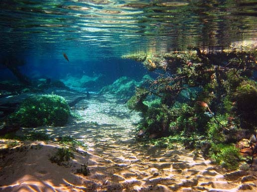 Ecoturismo in mato grosso viaggi in america latina for Grosso pesce di lago